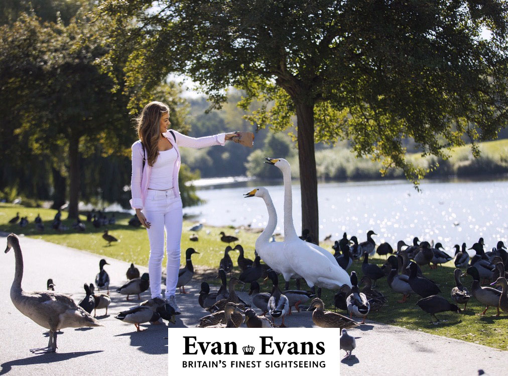 Shoot for Evan Evans Tours