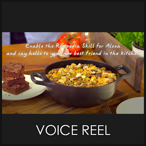 Voiced Videos